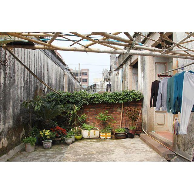 #frontyardbackyard of a house in rural village #cidinchina